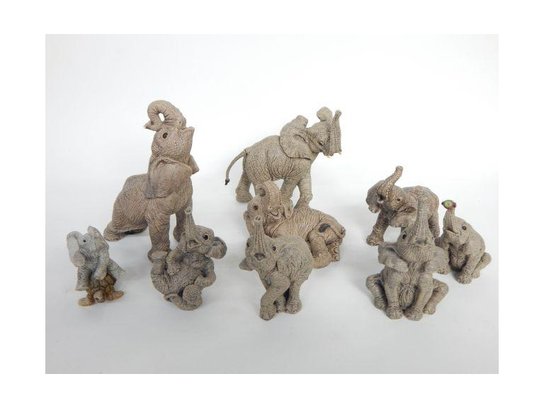 The Herd Elephant Collection