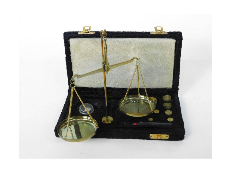 Portable Balance Scale with Case
