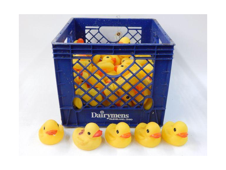 Crate Full of Rubber Ducks