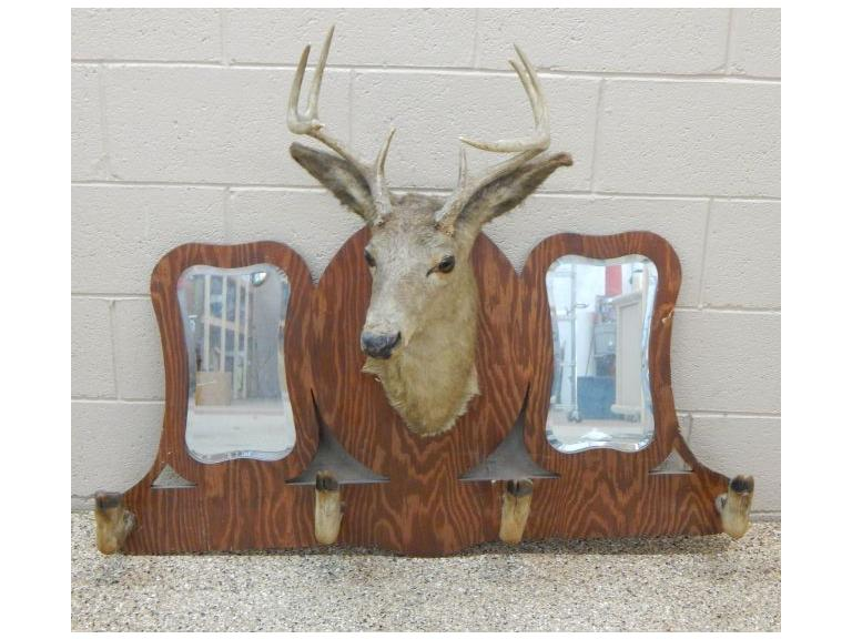 8 Point Deer Mount  & Rack