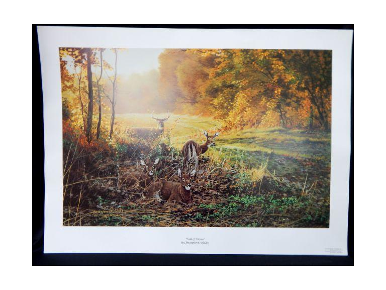 Walden Signed Deer Prints